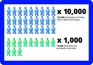 Infographic 8